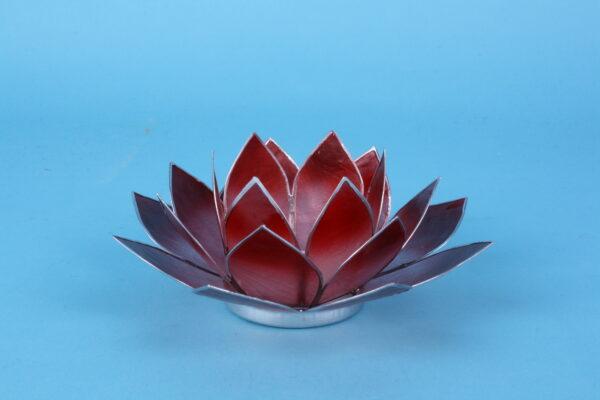 20161464 – Lotus roze rood zilverrand klein