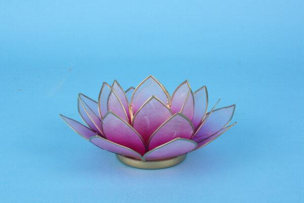 20161488 – Lotus roze licht roze klein