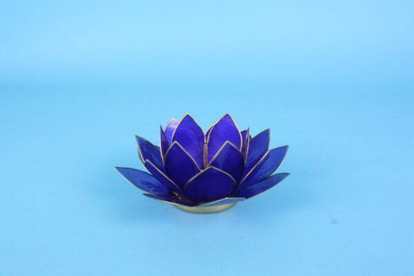 20161888 – Lotus indigo met goudrand