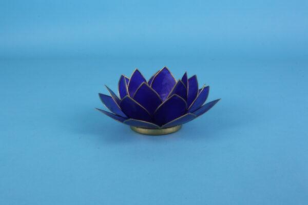 20162357-lotus-violet-goudrand