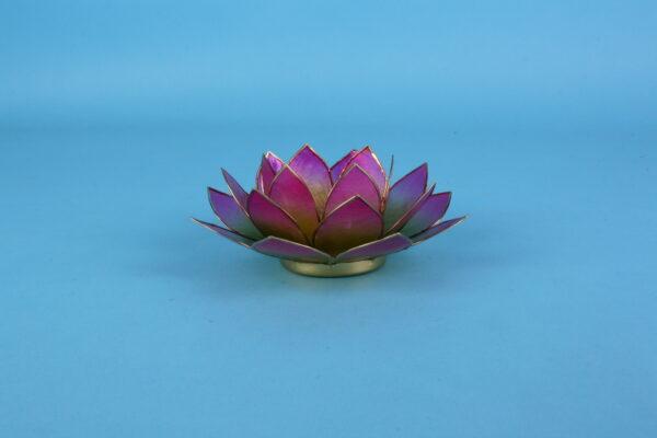 20162360-lotus-rose-groen