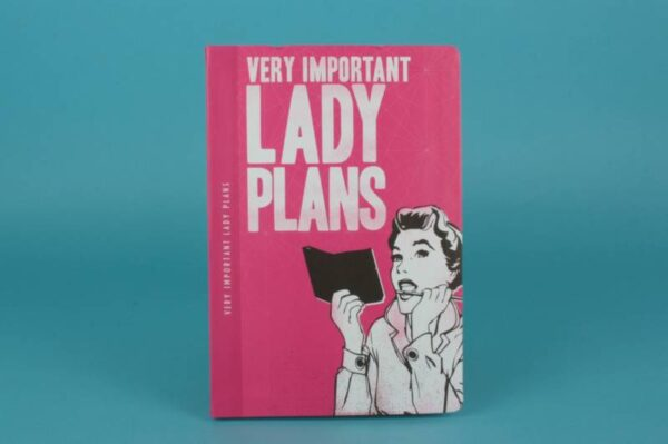 20173150 – 880021 Very important lady plans
